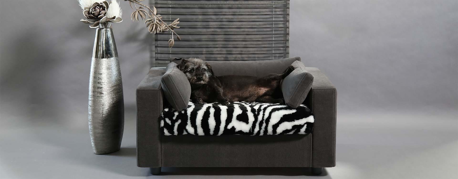 Che misura scegliere per il divano del tuo cane o gatto - Crea il tuo divano ...