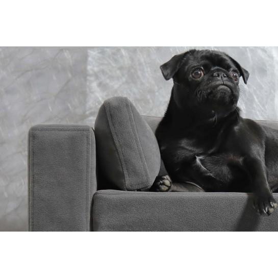 fauteuil chiens et chats original confortable coussin orthop 233 dique