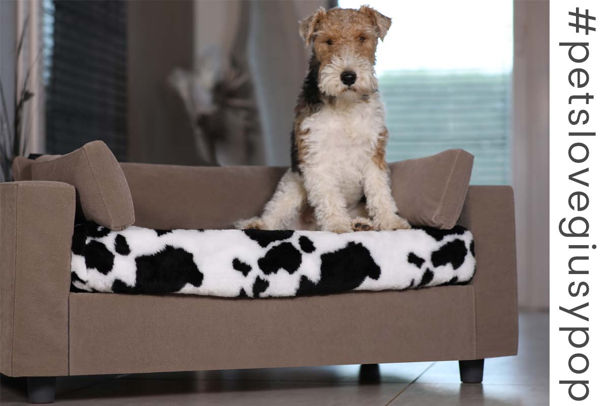 Cosy pet sofa