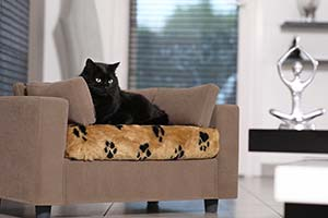 Couchage pour chat design confort