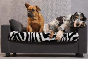 Dog bed manufacturer
