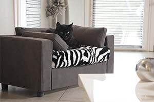 Pet cushion removable covers Giusypop