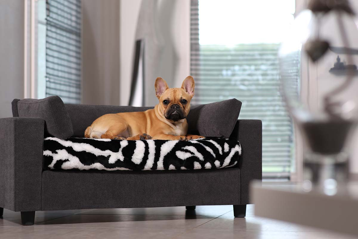 canap pour chiens et chats armonia galerie. Black Bedroom Furniture Sets. Home Design Ideas