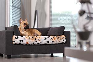 Кровать для собаки с ортопедической подушкой
