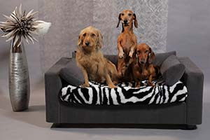wholesaler of cosy pet bed