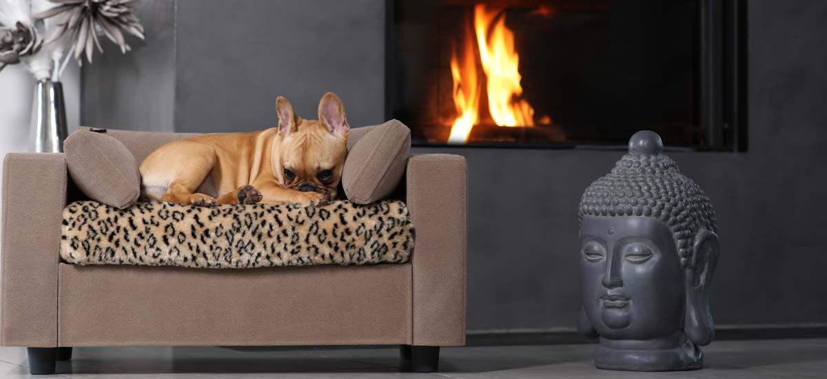 Fauteuil en bois pour chiens