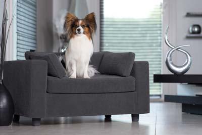 panier pour chien luxe
