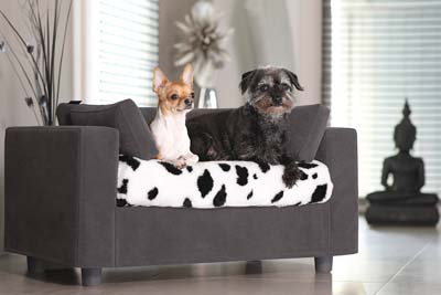 Dog sofa - Cat sofa with blanket