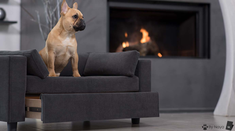 canap s pour chiens design grand confort. Black Bedroom Furniture Sets. Home Design Ideas